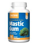 JARROW Mastic Gum 60 tab.