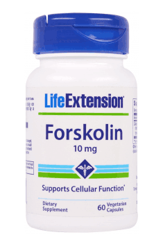Forskolin Active opinia