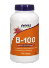 B-100