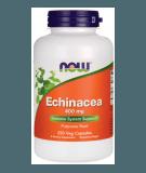 NOW FOODS Echinacea 400mg 250 kaps.