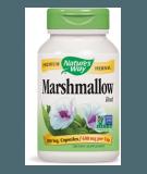 NATURE'S WAY Marshmallow Root 100 kaps.