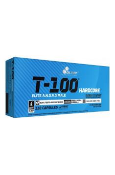 T-100 Hardcore