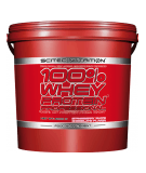 SCITEC 100% Whey Protein Professional 5000g